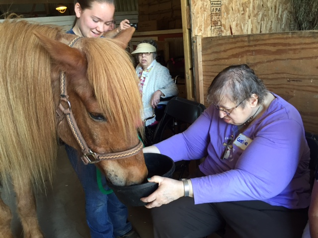 Photo of senior citizens feeding a pony in the barn at Nature's Edge