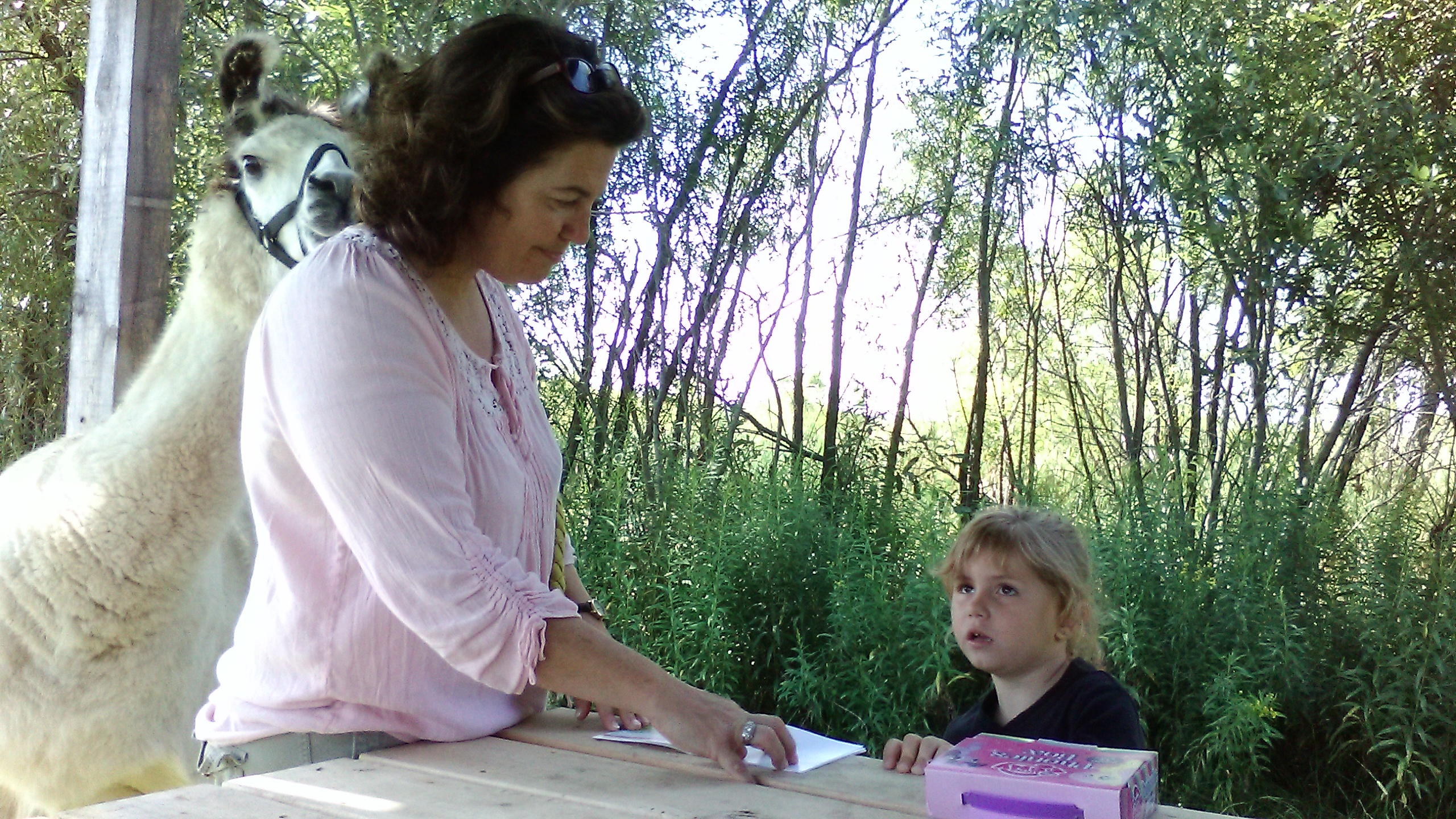 Photo of Nature's Edge Director Becky Payne with a young female patient reading a paper outside at a picnic table with a llama looking on in the background.